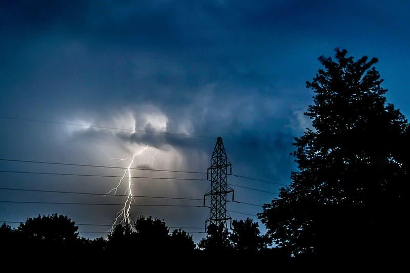 Fork lightning struck on trees